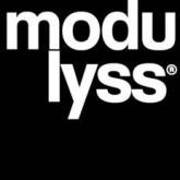 modulyss logo